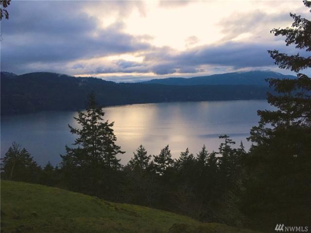Orcas Island, WA 98245 :: Ben Kinney Real Estate Team