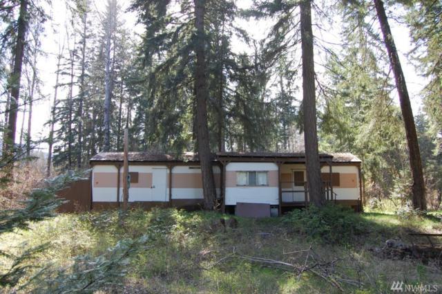 391 Ermine Lp, Cle Elum, WA 98922 (#1104121) :: Ben Kinney Real Estate Team