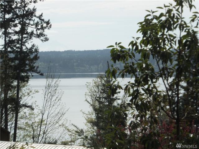 181 Soaring Eagle Rd, Port Ludlow, WA 98365 (#1104939) :: Ben Kinney Real Estate Team