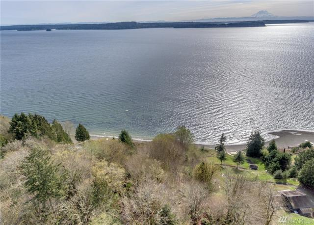 15528 53rd St KP, Lakebay, WA 98349 (#1105517) :: Ben Kinney Real Estate Team