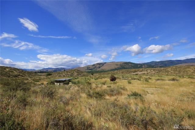 20 Hamilton Ranch Lp, Winthrop, WA 98862 (#1107104) :: Ben Kinney Real Estate Team