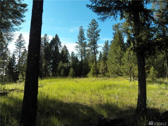 0-TBD Wannamaker Rd, Oroville, WA 98844 (#1107480) :: Homes on the Sound