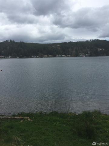 911 Summit Lake Shore Rd NW, Olympia, WA 98502 (#1110504) :: Ben Kinney Real Estate Team