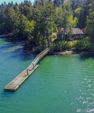 464 Heron Lane, San Juan Island, WA 98250 (#1110667) :: Ben Kinney Real Estate Team