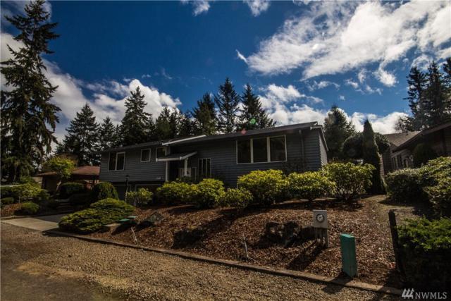 149 Leslie Lane, Sequim, WA 98382 (#1111119) :: Ben Kinney Real Estate Team
