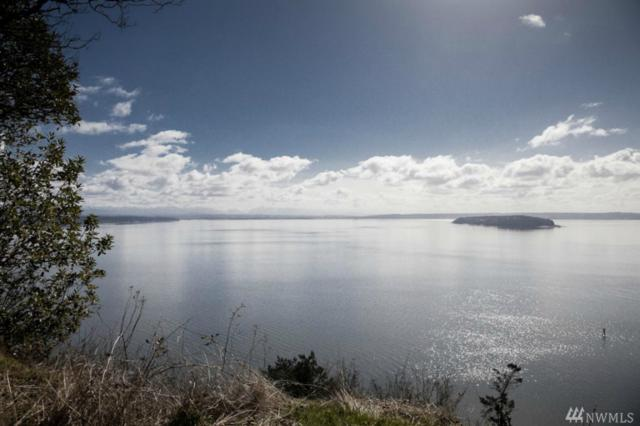 0 South Camano Dr, Camano Island, WA 98282 (#1111394) :: Ben Kinney Real Estate Team