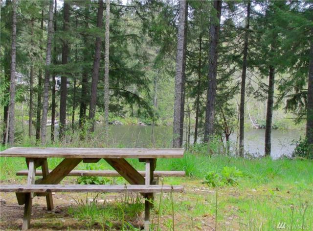 23 Silent Lake Rd, Quilcene, WA 98376 (#1111734) :: Ben Kinney Real Estate Team