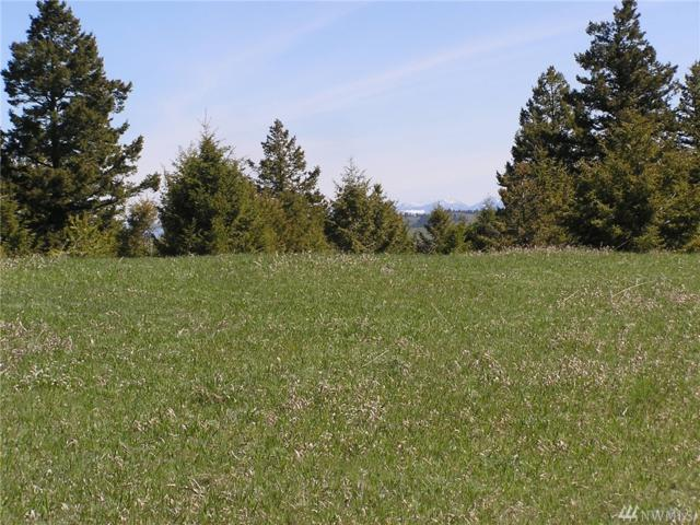 111 Moose Mtn Rd, Oroville, WA 98844 (#1111875) :: Ben Kinney Real Estate Team