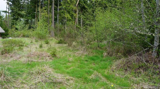 9999-Lot 6 Gretas Place, Sequim, WA 98382 (#1112691) :: Ben Kinney Real Estate Team