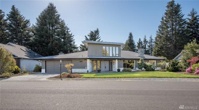 222 Hurricane Ridge Dr, Sequim, WA 98382 (#1114056) :: Ben Kinney Real Estate Team