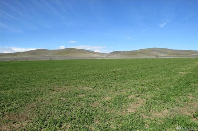 5-Lot Bohannon Rd, Ellensburg, WA 98926 (#1114138) :: Ben Kinney Real Estate Team