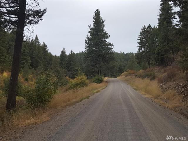 0 Tamarack Canyon Rd E, Reardan, WA 99029 (#1114566) :: Ben Kinney Real Estate Team
