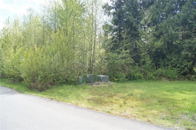 900 185th Ave NE, Snohomish, WA 98290 (#1115093) :: Ben Kinney Real Estate Team