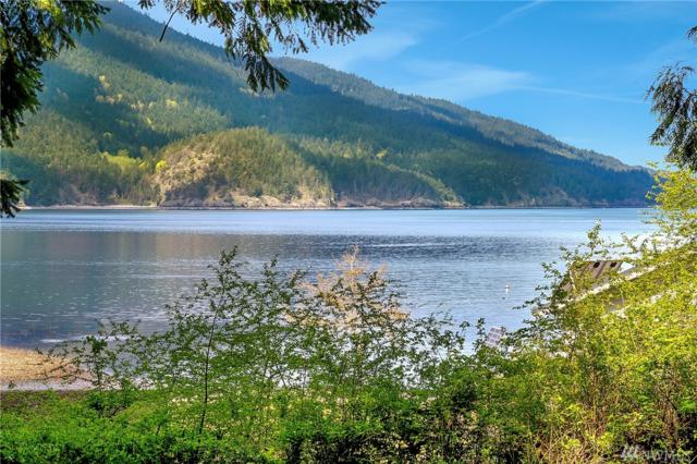 99 Lot 99, Bellingham, WA 98225 (#1115177) :: Ben Kinney Real Estate Team