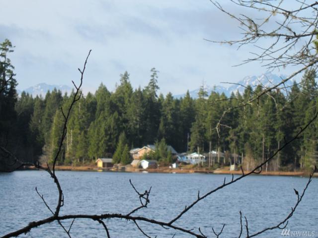 0-TR87 NE Tee Lake Rd, Tahuya, WA 98588 (#1115705) :: Ben Kinney Real Estate Team