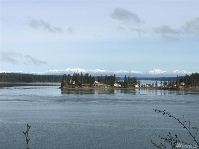 8541 NE Island View Ct, Olympia, WA 98506 (#1116075) :: Ben Kinney Real Estate Team