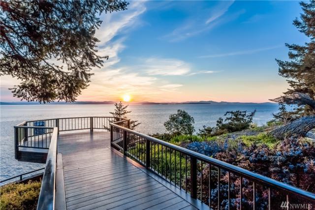 723 Carefree Wy, San Juan Island, WA 98250 (#1116170) :: Ben Kinney Real Estate Team