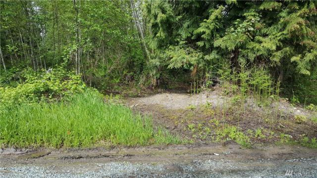 4931 175th St NW, Stanwood, WA 98292 (#1116417) :: Ben Kinney Real Estate Team