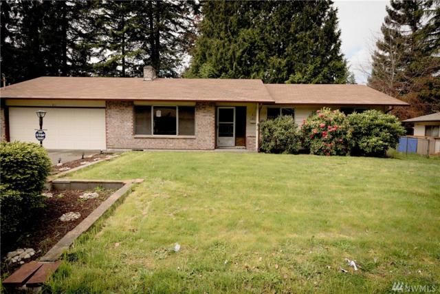 411 Bulldog St SE, Olympia, WA 98503 (#1116722) :: Ben Kinney Real Estate Team