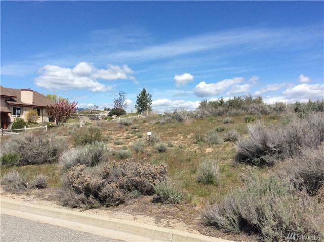 304 Desert View Place, Orondo, WA 98843 (#1116878) :: Ben Kinney Real Estate Team