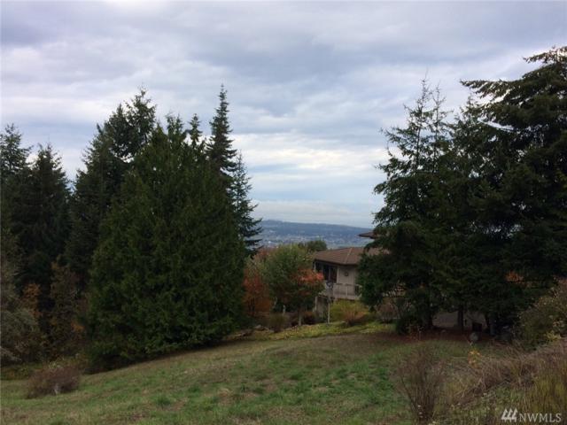 99 Ravens Ridge Rd, Sequim, WA 98382 (#1117602) :: Ben Kinney Real Estate Team