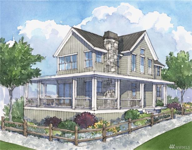 203 Bobcat Lane, Chelan, WA 98816 (#1117675) :: Ben Kinney Real Estate Team