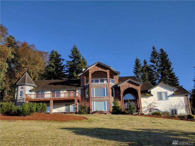 811 Fox Hollow Rd, Sequim, WA 98382 (#1117822) :: Ben Kinney Real Estate Team