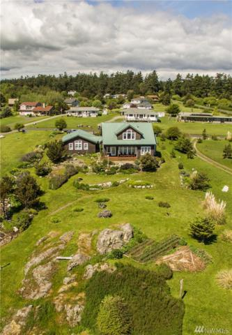 255 Eagle Cove Dr, Friday Harbor, WA 98250 (#1118418) :: Ben Kinney Real Estate Team