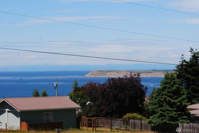 272 Goss Rd, Port Townsend, WA 98368 (#1118576) :: Kimberly Gartland Group