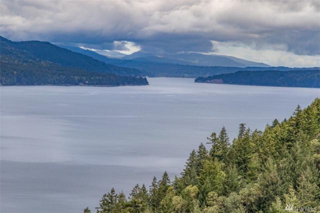 1 Sierra Trails Rd, Quilcene, WA 98376 (#1118891) :: Ben Kinney Real Estate Team
