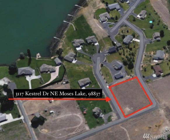 3117 Kestrel Dr NE, Moses Lake, WA 98837 (#1118946) :: Ben Kinney Real Estate Team