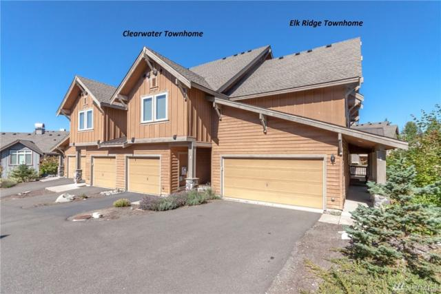 161 Clearwater Lp #3, Ronald, WA 98940 (#1119090) :: Ben Kinney Real Estate Team