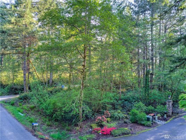 3012 115th Ave NW, Gig Harbor, WA 98335 (#1119169) :: Ben Kinney Real Estate Team