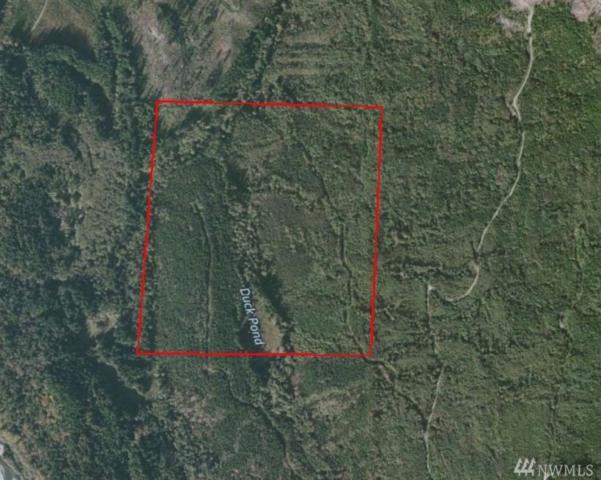 0-XX Saxon Rd, Deming, WA 98244 (#1119334) :: Ben Kinney Real Estate Team