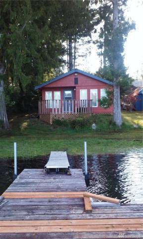 110 W Lost Lake Park Dr, Shelton, WA 98584 (#1119407) :: Homes on the Sound