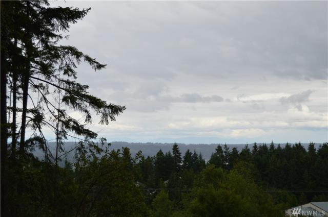 0 Dickey Rd, Silverdale, WA 98383 (#1120243) :: Better Homes and Gardens Real Estate McKenzie Group