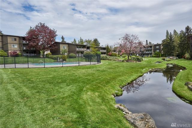 13067 15th Ave NE, Seattle, WA 98125 (#1121119) :: The Robert Ott Group