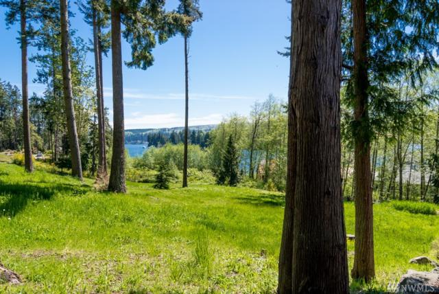 82 Ebb Tide Ct, Port Ludlow, WA 98365 (#1121175) :: Homes on the Sound