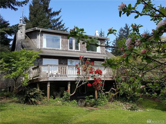 2904 271st St, Nahcotta, WA 98637 (#1121180) :: Ben Kinney Real Estate Team