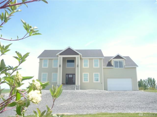 183 A Rd NE, Moses Lake, WA 98837 (#1121359) :: Ben Kinney Real Estate Team