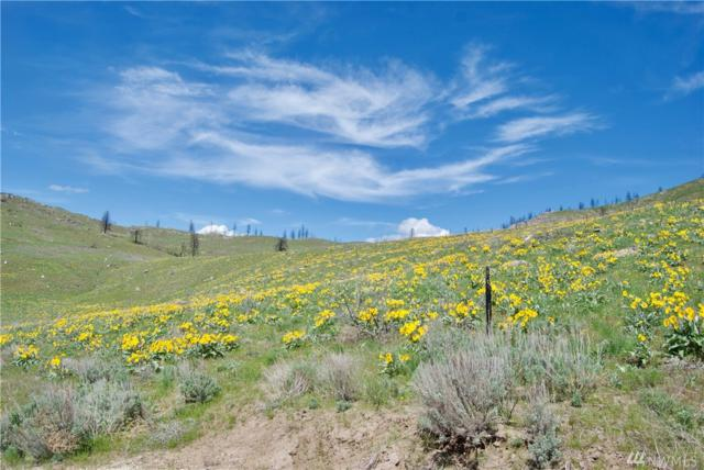 0 Lot 58 Methow River Ranch, Methow, WA 98834 (#1121373) :: Ben Kinney Real Estate Team