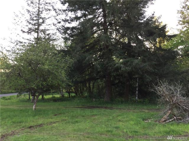 137 Cloquallum Rd, Elma, WA 98541 (#1121539) :: Ben Kinney Real Estate Team