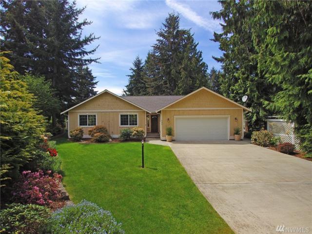 157 Leslie Lane, Sequim, WA 98382 (#1122023) :: Ben Kinney Real Estate Team