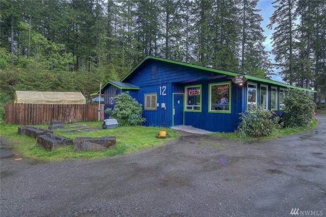 1509 Key Peninsula Hwy KP, Lakebay, WA 98349 (#1123113) :: Ben Kinney Real Estate Team