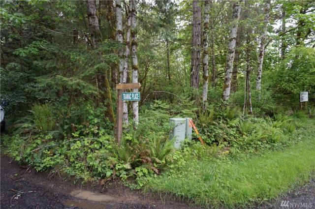 0 Libby Rd, Shelton, WA 98584 (#1123699) :: Ben Kinney Real Estate Team