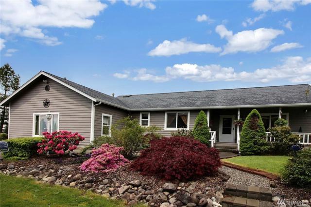 18310 Guava St SW, Rochester, WA 98579 (#1123835) :: Ben Kinney Real Estate Team