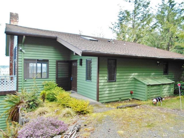 179 Galloway Lane, Brinnon, WA 98320 (#1123997) :: Ben Kinney Real Estate Team