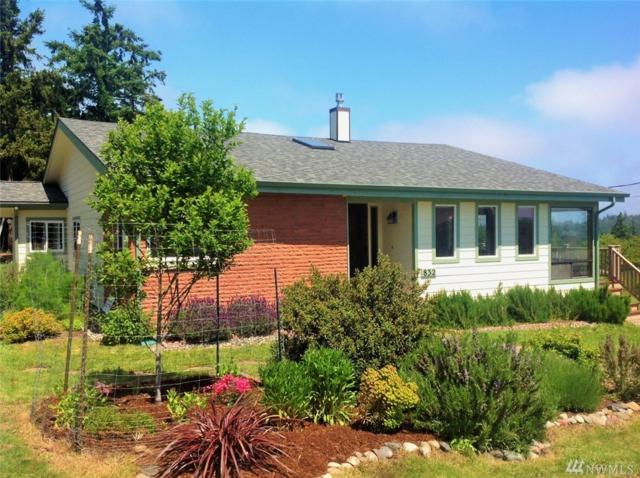 832 Hastings Ave, Port Townsend, WA 98368 (#1124690) :: Ben Kinney Real Estate Team
