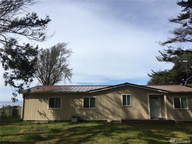 550 E Bluff Dr, Port Angeles, WA 98362 (#1124783) :: Ben Kinney Real Estate Team