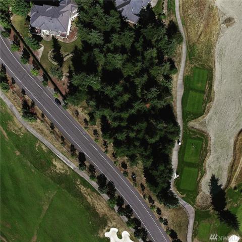 32915 143rd Ct SE, Auburn, WA 98092 (#1125001) :: Ben Kinney Real Estate Team